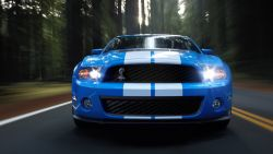 2010 Ford Shelby GT500 - 1